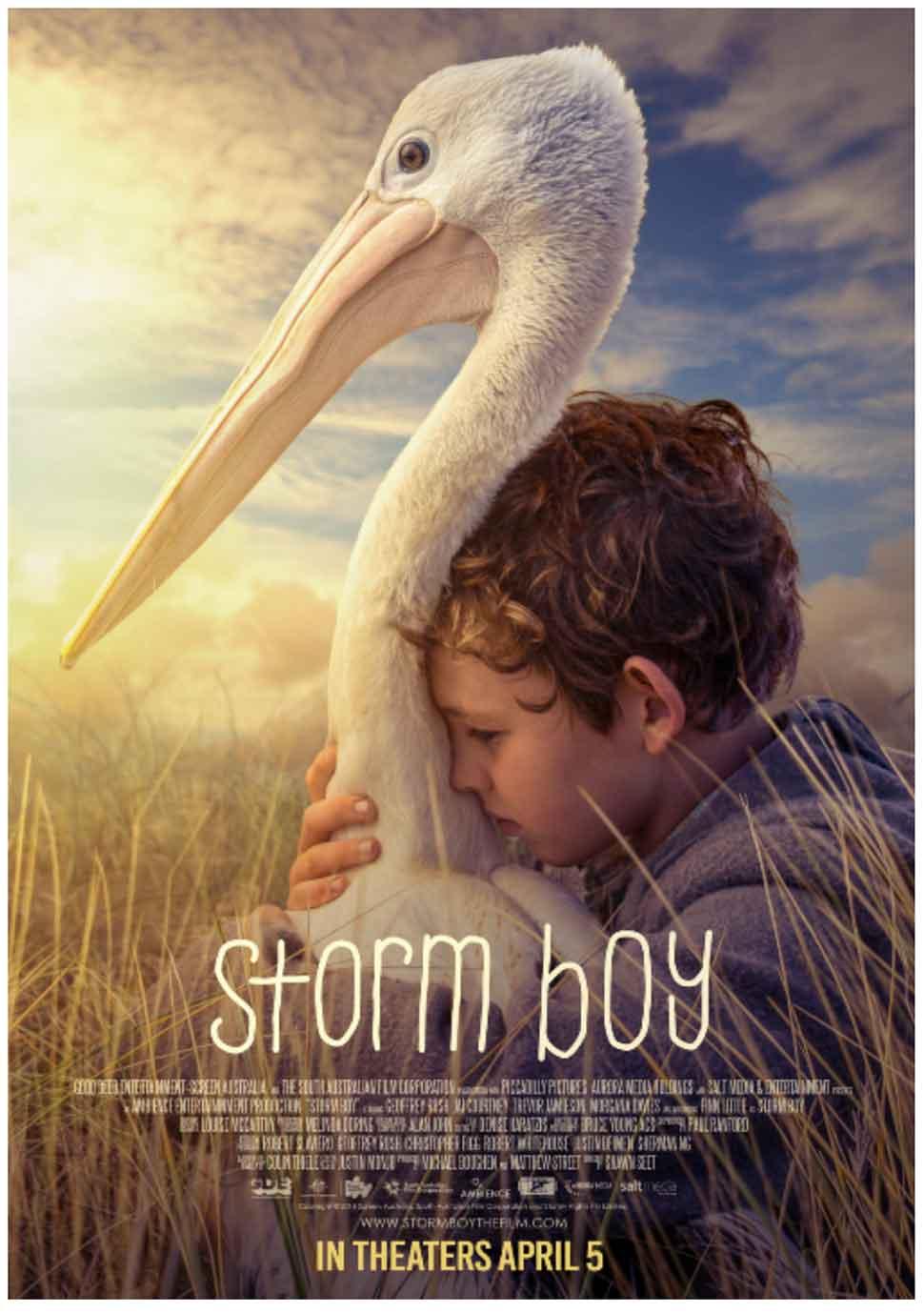 Storm Boy poster art